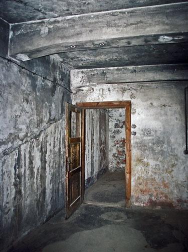 cp_gas chamber door